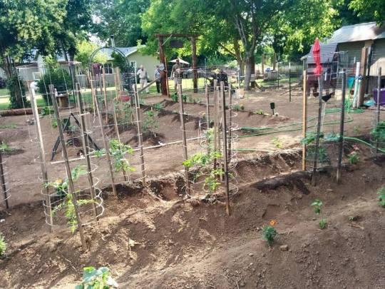 green acres garden 3