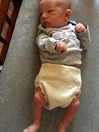 wool diaper