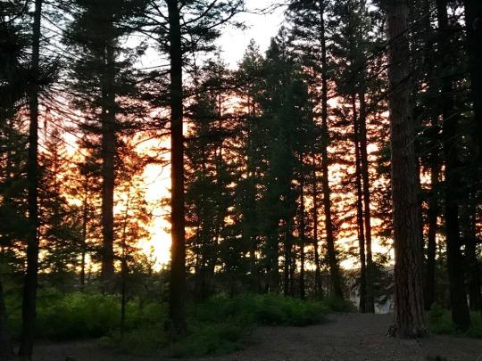 camping18-28